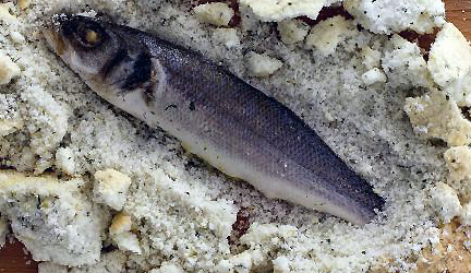 branzino in crosta di sale e birra